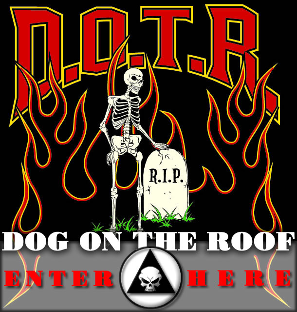 DOG ON THE ROOF ALCOHOLICS ANONYMOUS