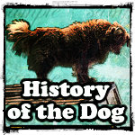 Alcoholics Anonymous History of Dog On The Roof Group